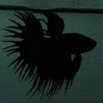 Bettaria (Pedro Santos)'s Avatar