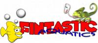 Fin Tastic (Denis Dave)'s Avatar