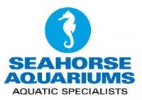 seahorse (Kealan Doyle)'s Avatar