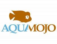 Aquamojo (Mo Devlin)'s Avatar